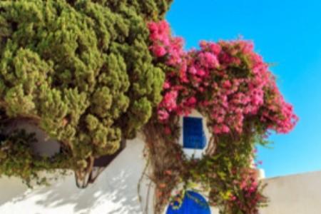 Nejoblíbenější tuniská letoviska