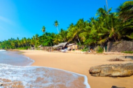 6 důvodů pro návštěvu Srí Lanky