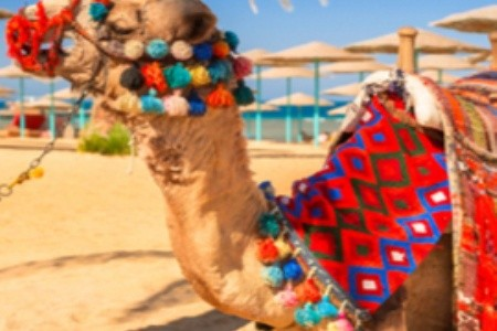 Hurghada - a megunhatatlan klasszikus