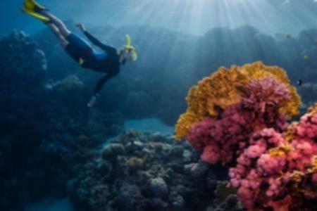 Egypt sportovní: Které aktivity si užijete u Rudého moře?
