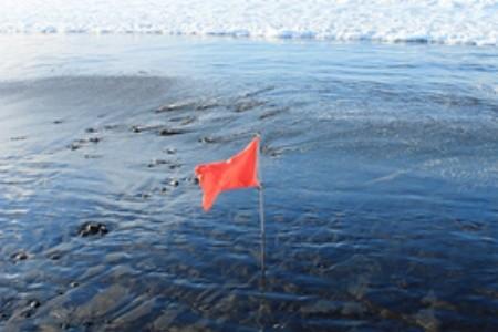 Plážové vlajky: Víte, co znamenají jejich barvy a na co si dát pozor?