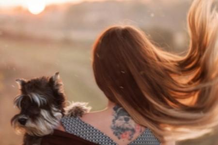 Legjobb kutyabarát szállodák az őszre