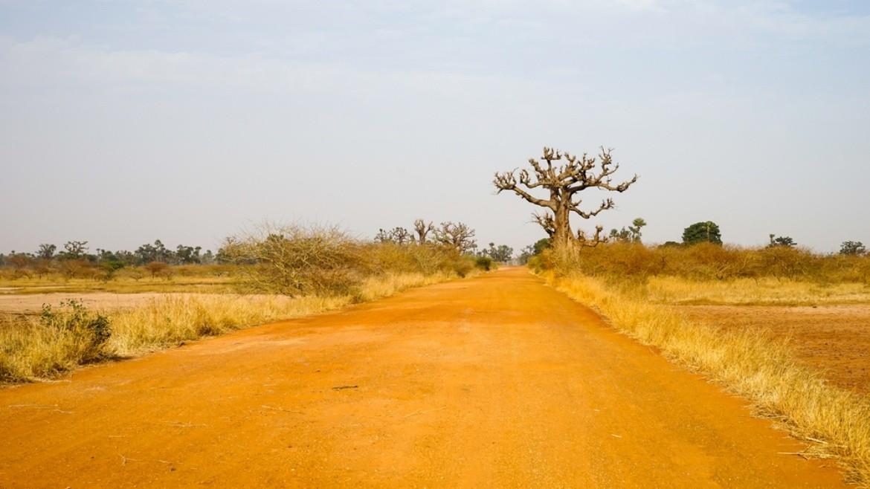 Szenegál