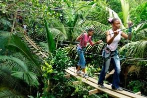 Le Jardin Malanga
