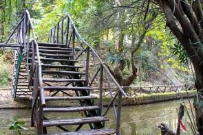 Park Rodini