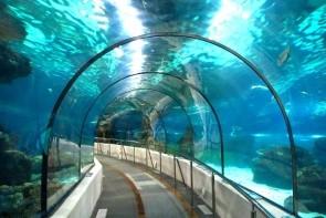 Akvárium L´Aquarium de Barcelona
