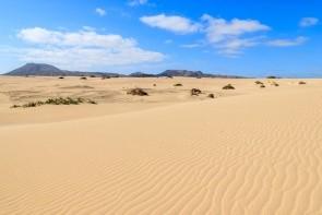 Písečné duny Corralejo