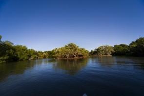 Národný park Laguna de la Restinga