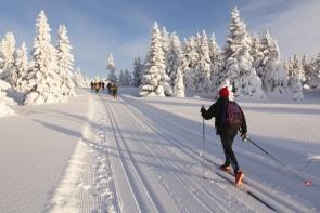 Lyžování na běžkách v údolí Alpbachtal