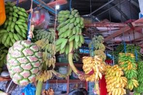 Lokální trh v Malé