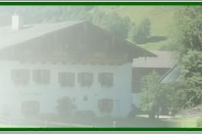 Embachbauer
