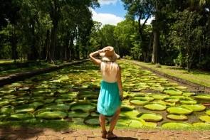 Botanická zahrada Pamplemousse