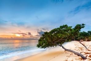 Pláž Cayo Levantado