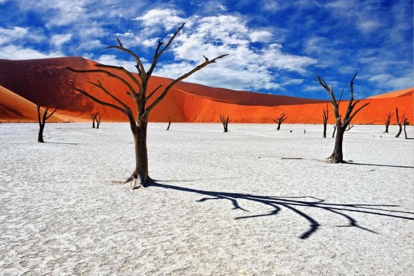 Dead Vlei, Namíbia