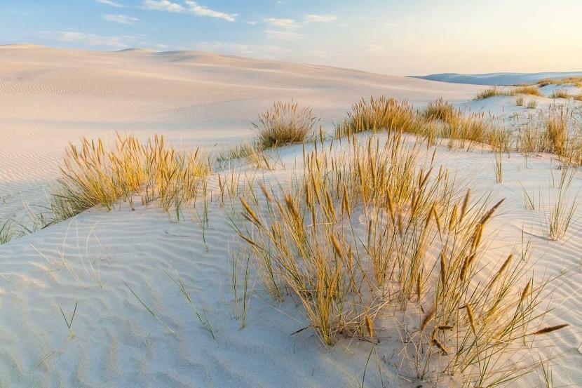 Piesočné duny, Poľsko