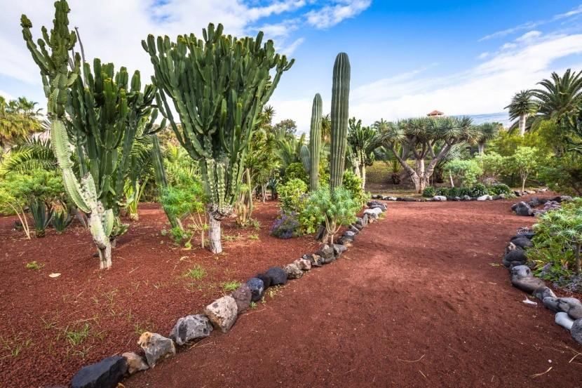 Botanické záhrady Puerto de la Cruz