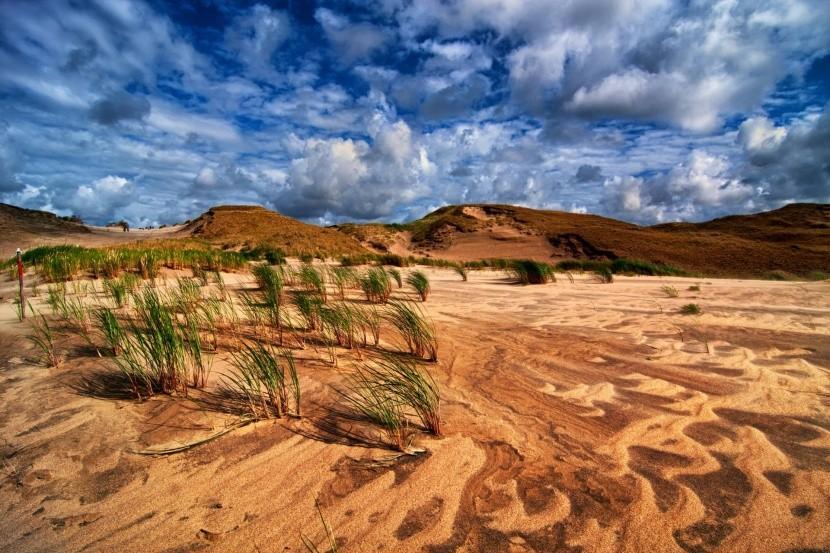 Dead Dunes, Litva