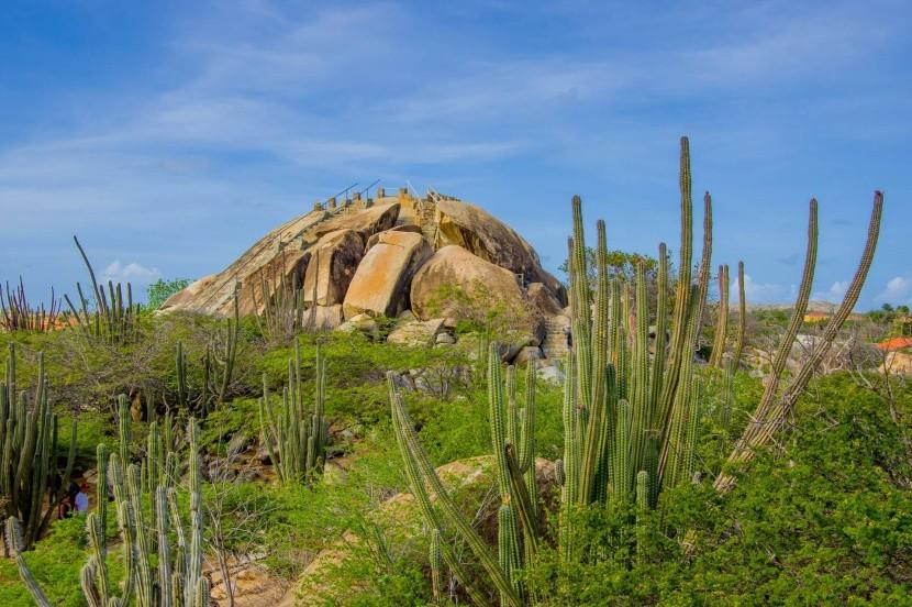 Příroda Aruby