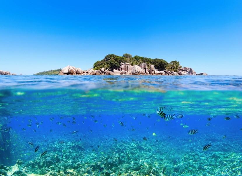 Podmorský svet na Seychelách
