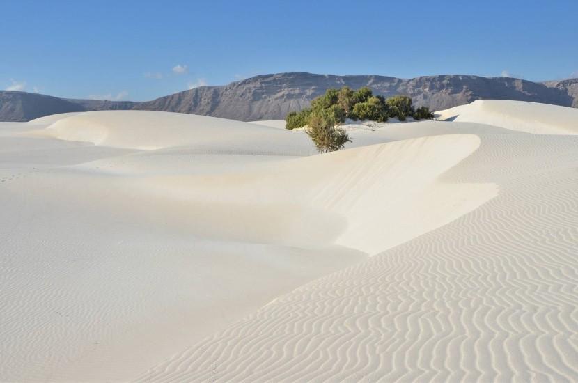 Písečné duny Stero, Sokotra