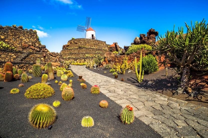 Kaktusová záhrada Césara Manriqueho