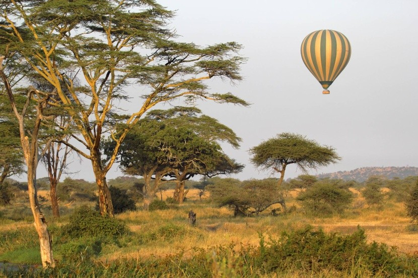 Hőlégballonnal a Serengeti NP felett