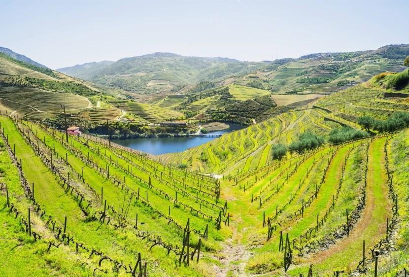 Region Douro