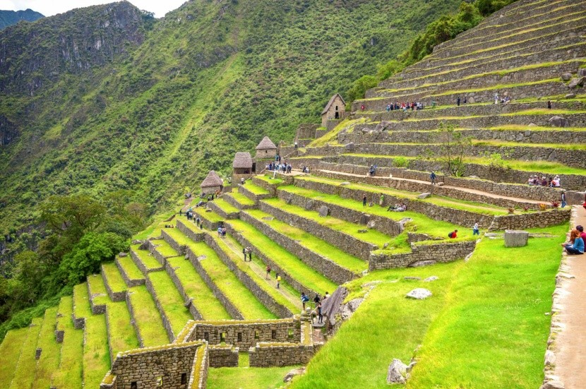 Machu Picchu teraszai