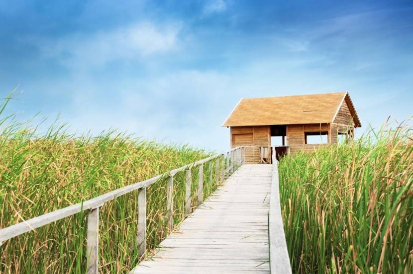 Madárleső házikó a Tisza-tónál