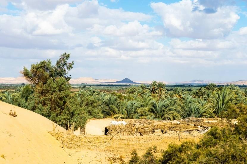 Oáza Bahríja, Egypt