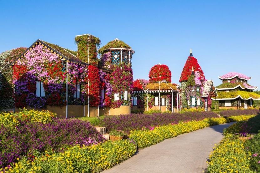 Dubai Miracle Garden kert