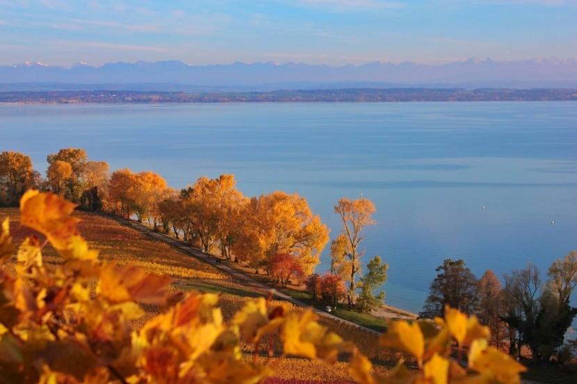 Neuchâtelské jezero