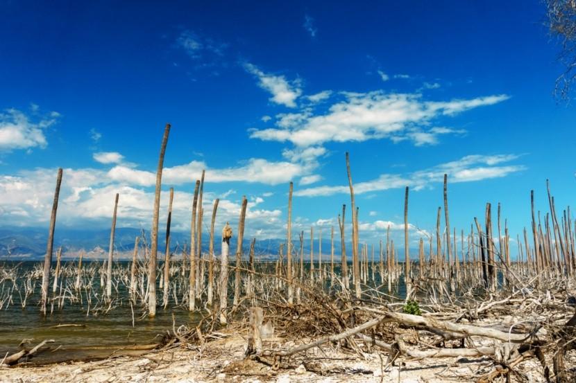 Soľné jezero Enriquillo