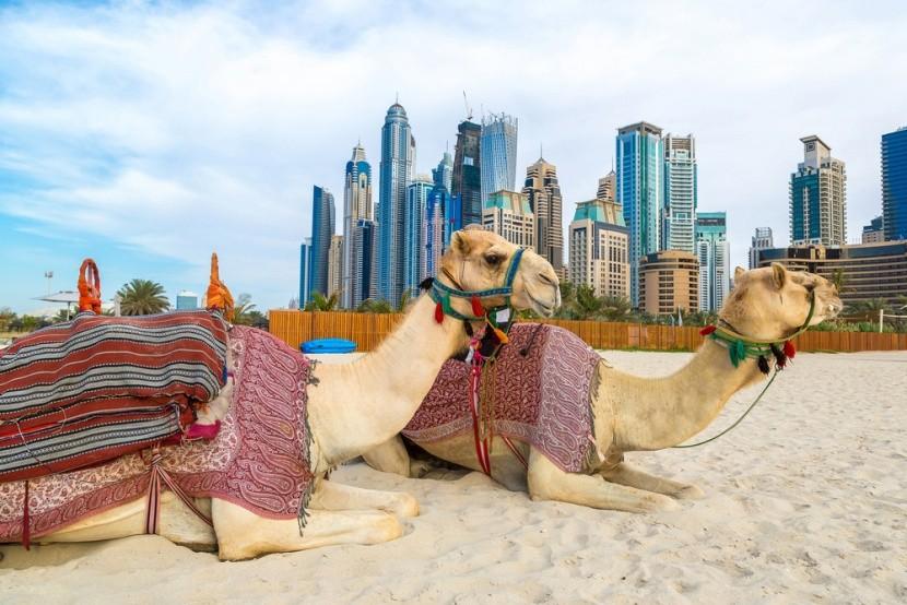 Tevék Dubaiban