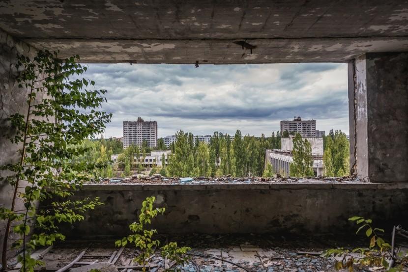 V Černobyle sa príroda vracia späť
