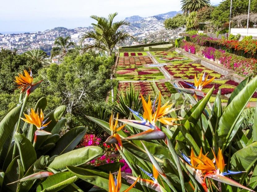 Madeira je rajská záhrada v Atlantiku