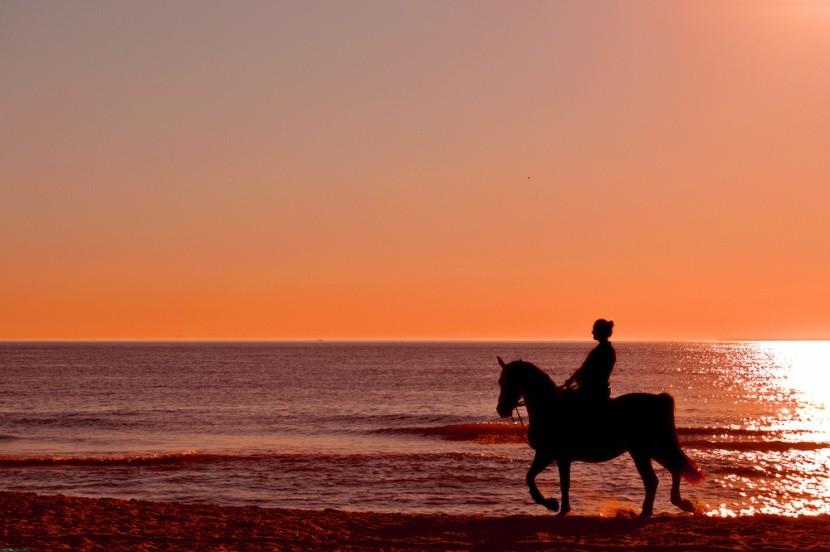 Jízda na koni na pláži