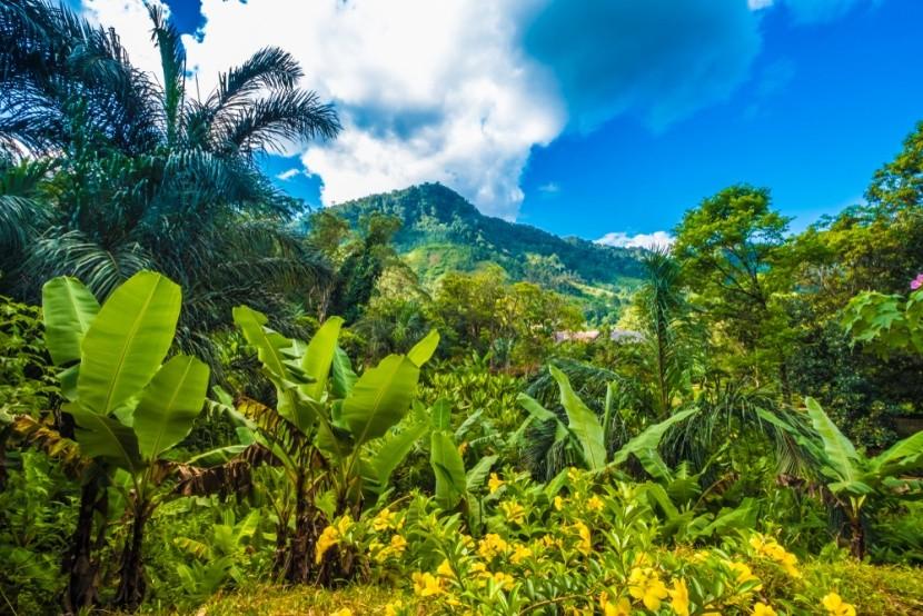 Národní park Ranomafana