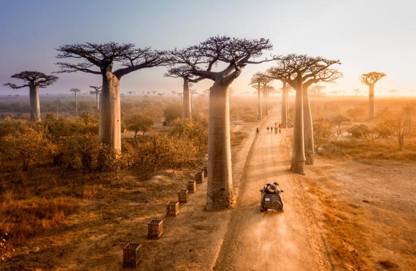 Madagaskar vás ohromí nejen baobaby
