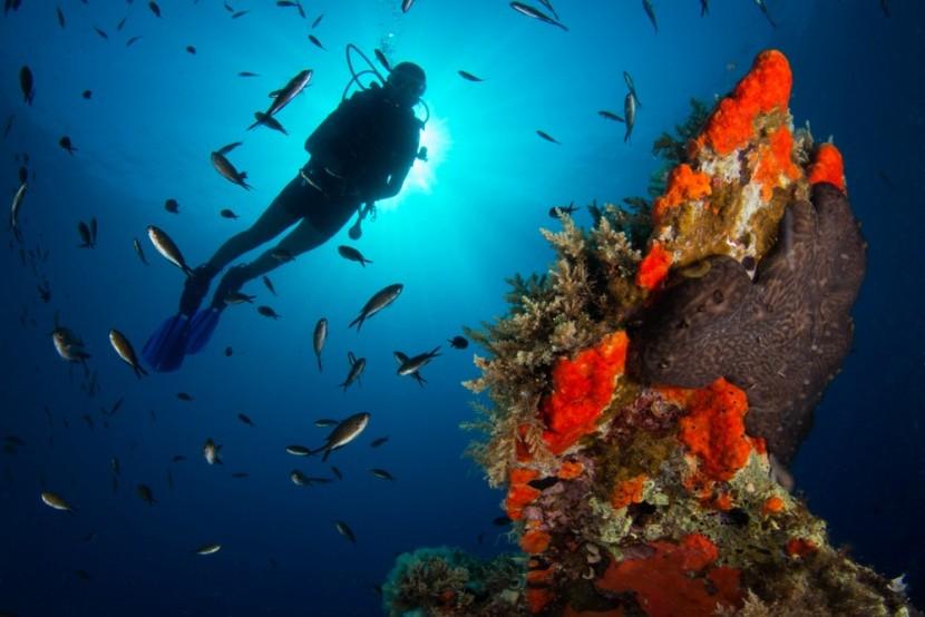 Potápění v Řecku